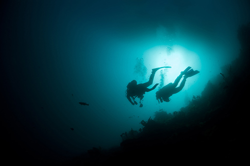 Night Snorkel or Scuba on Hawaii Island